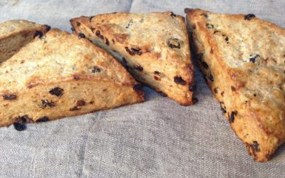 NOBLE APRICOT ROSEMARY CURRANT SCONES