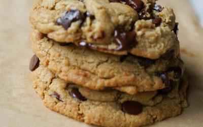 BAKERY CAFE CHOCOLATE CHIP COOKIES